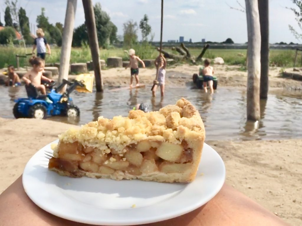 Belevenisboerderij Schieveen appeltaart