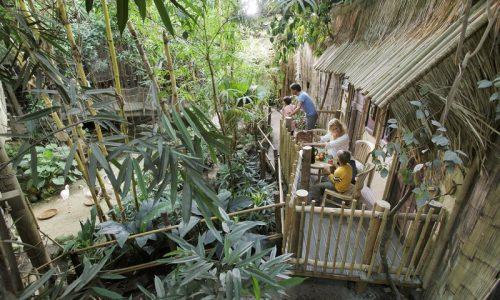 Slapen in de jungle dome bij het heijederbos